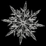 ice-crystal-64157_640